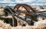 The Bridges by Wayman