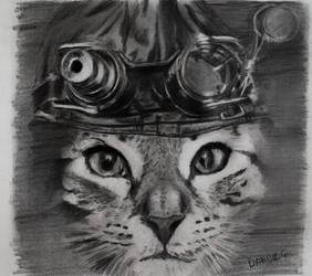 cat with a hat an so on...
