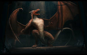 Dragon new version