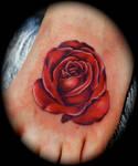 Roses 1...