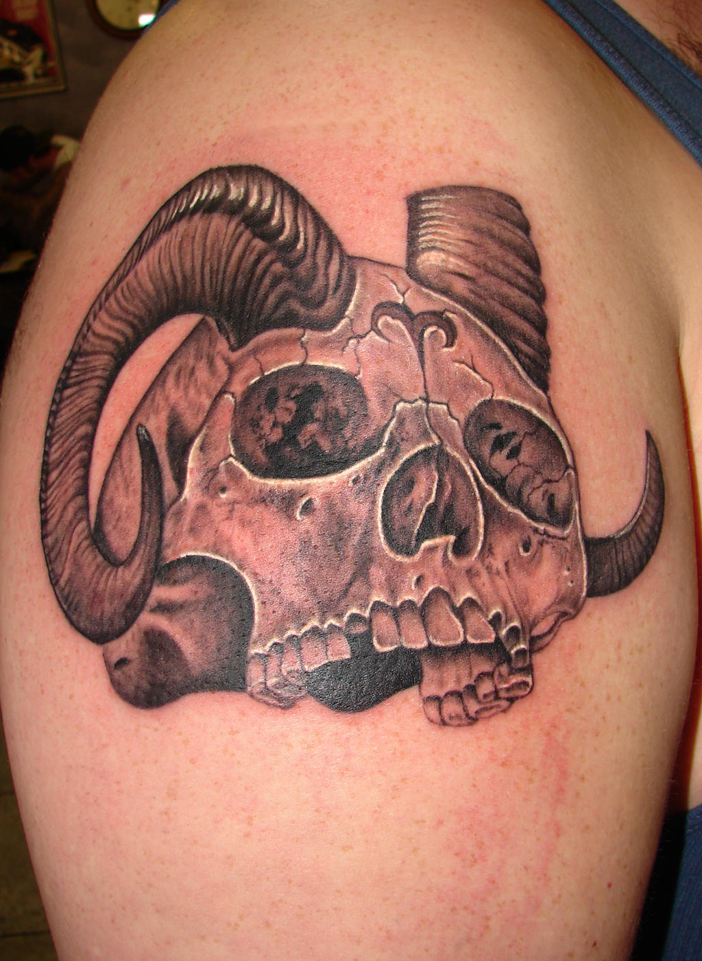skull with horns by asussman on DeviantArt