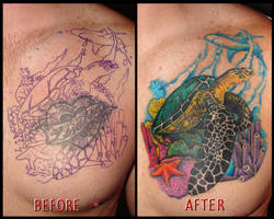 ocean scene cover-up by asussman