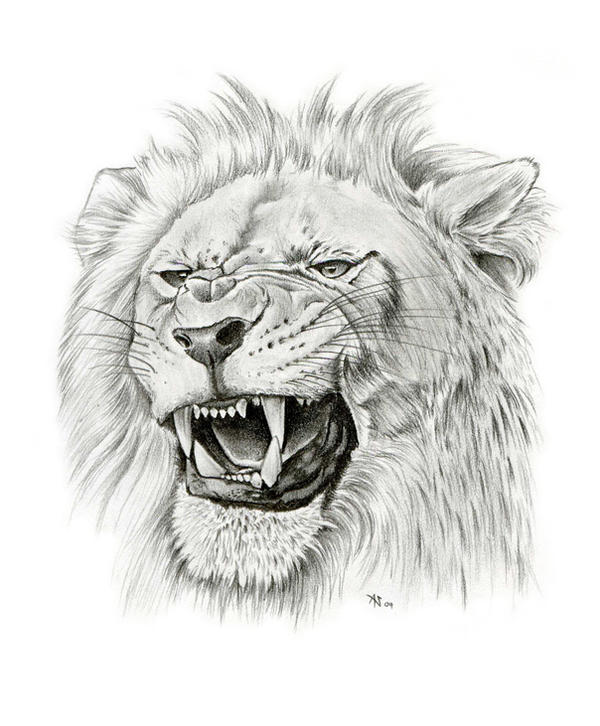 Roaring Lions Head Tattoo