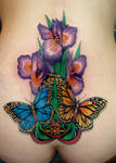 butterflies and irises