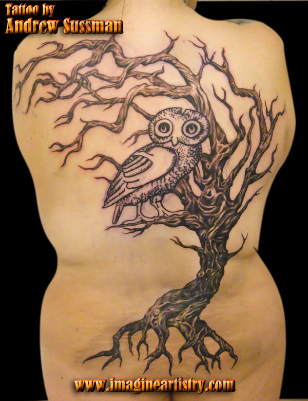 tree and owl