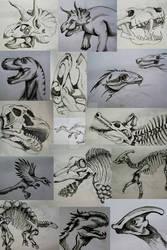 Dinosaurs/Studies
