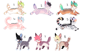 Leftover Adopts - DISCOUNTED - OPEN 8/8