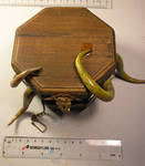 Thing in a Box 2
