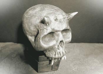 Vintage Skull (1913) by HerbertW