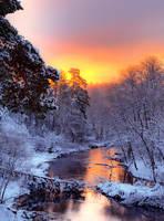 Good Morning -It's Snows!