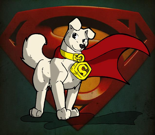 Super Premium Dog Food List