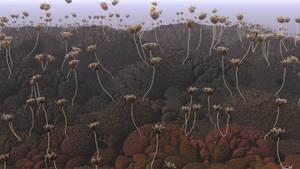 Strange Flowers in a Strange World - Pong124