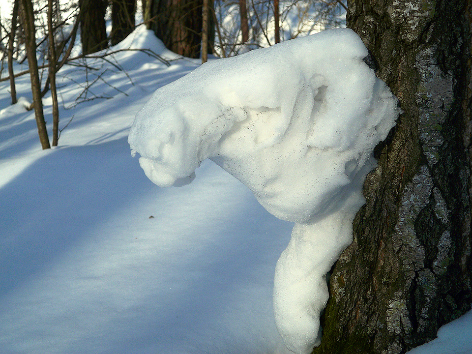 animal snow sculptures -#main