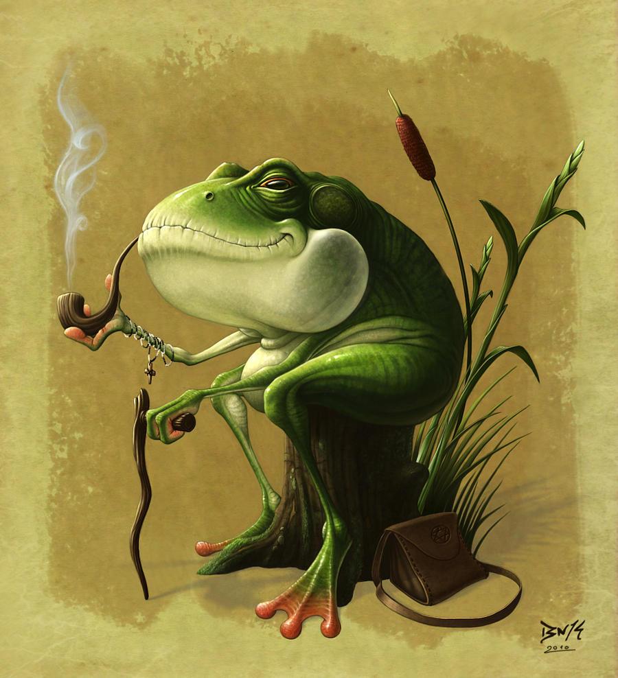 Old Man Frog by Bonekrishna