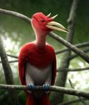 Compass Bird