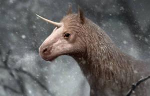Woolly Unicorn by Bonekrishna