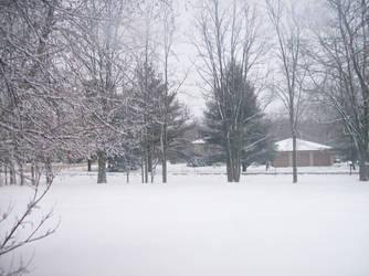Beloved Winter- White Sea