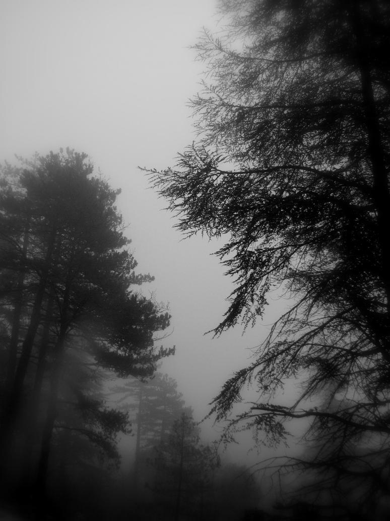 Misty Home by Nahuask