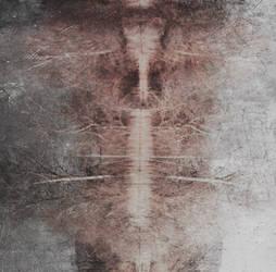 Totem by Nahuask