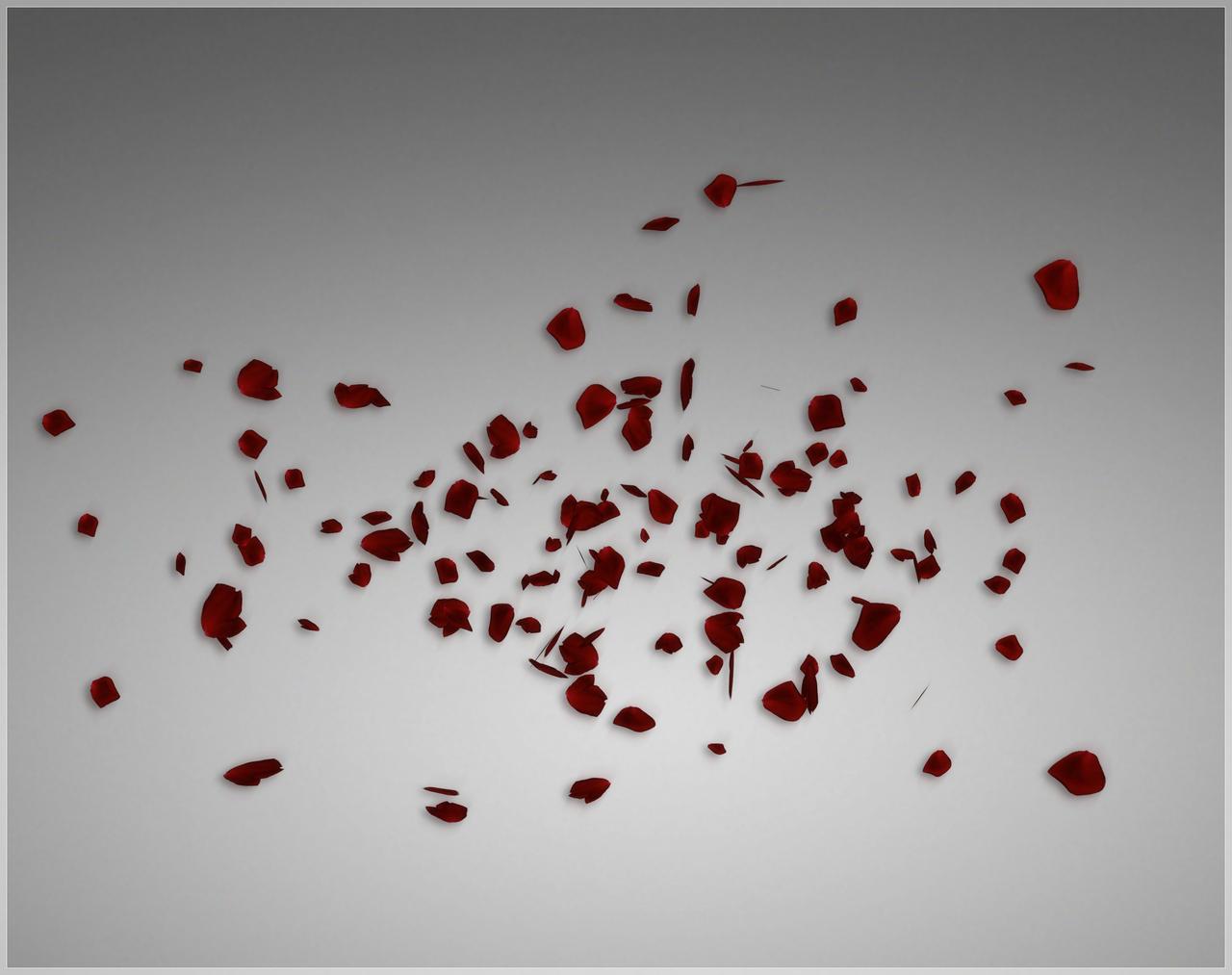 Falling Rose Petals by deexie on DeviantArt Petals Falling From A Flower