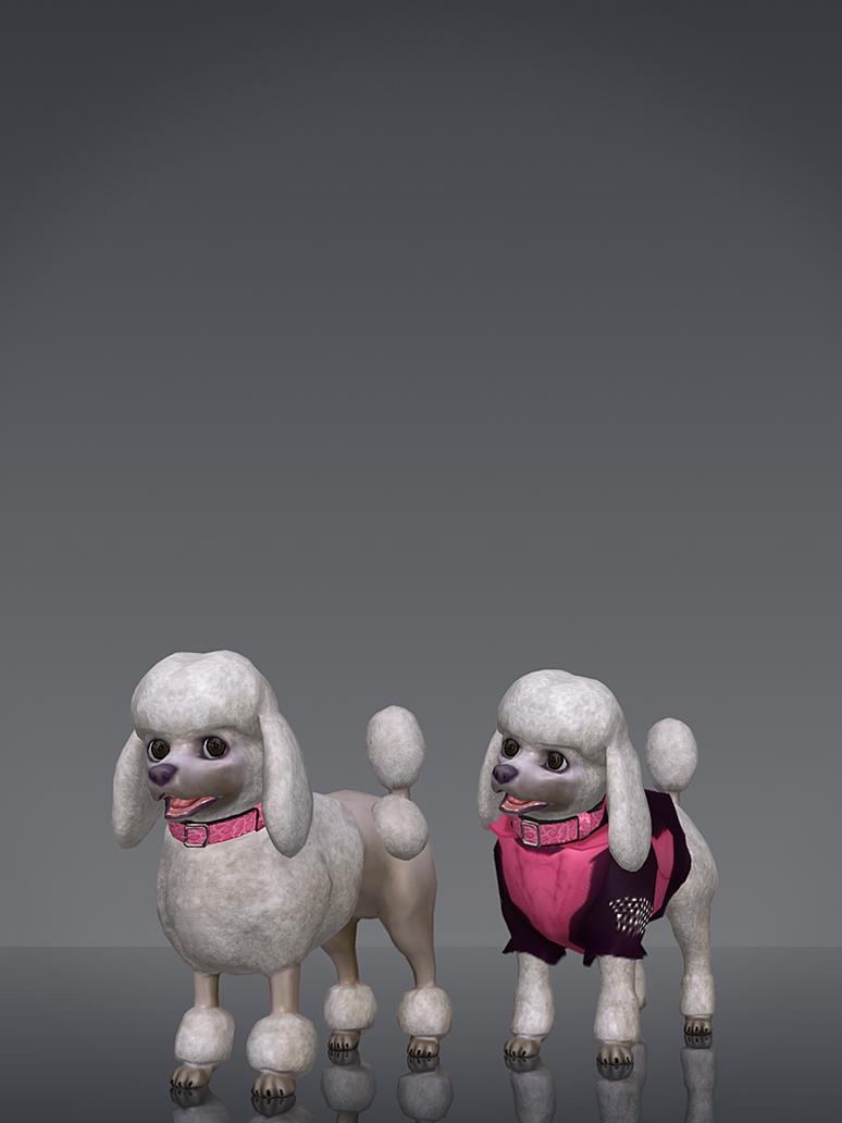 Poodles by deexie