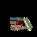 Books03