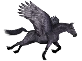 Wingdhorse03 by DarklingStock
