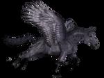 Wingdhorse03