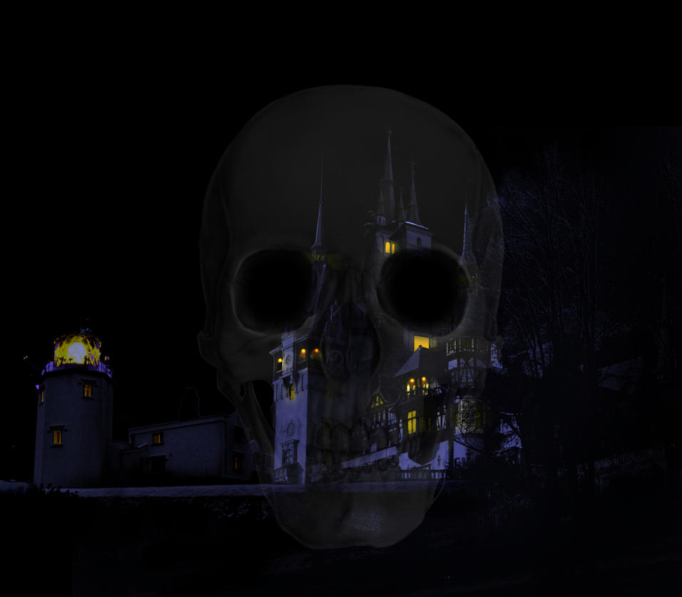 CastleSkull by Mandakini