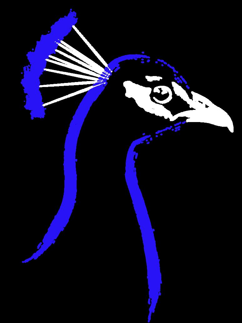 Peacock by Mandakini
