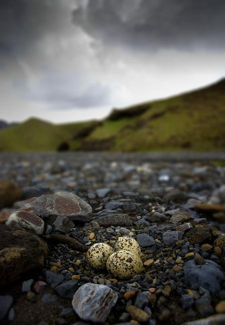 Islandia fotografie Yazhubal