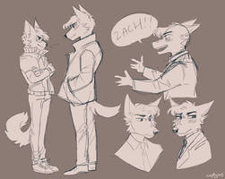 Misc Sketches by captyns