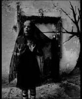 silence and ashes by shamanski