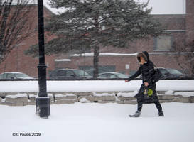 Winter Weather 0134 1-28-19 by eyepilot13