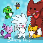 Silver's Pets