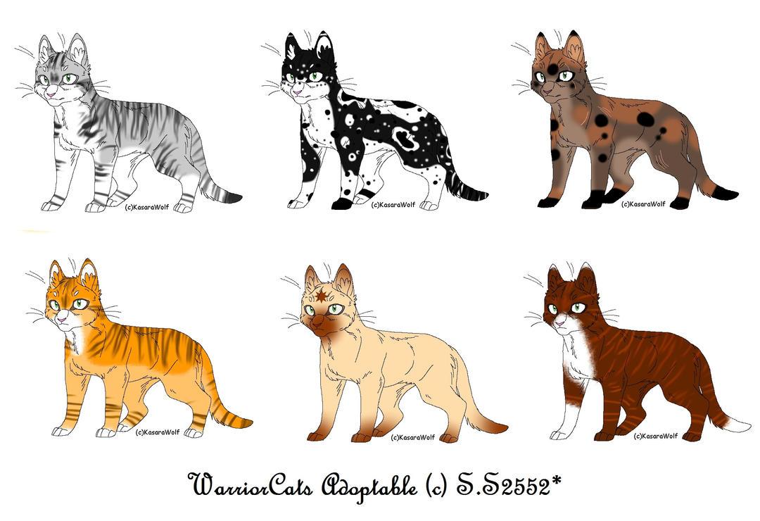 Warrior Cats Blossomkit WarriorCats Adoptable  2
