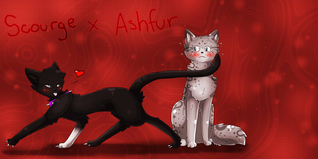 Warrior Cats My Love Story Shecats Only