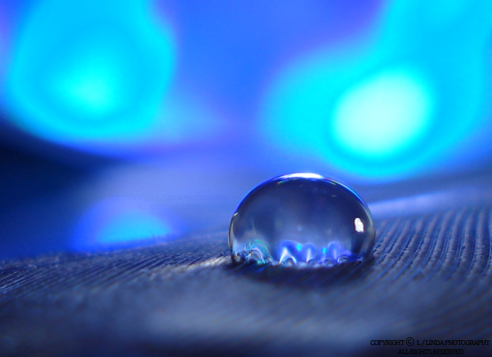 blue night drop by lindahabiba