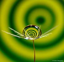Spiral swirl in Green and Yellow by lindahabiba