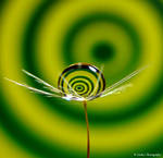 Spiral swirl in Green and Yellow