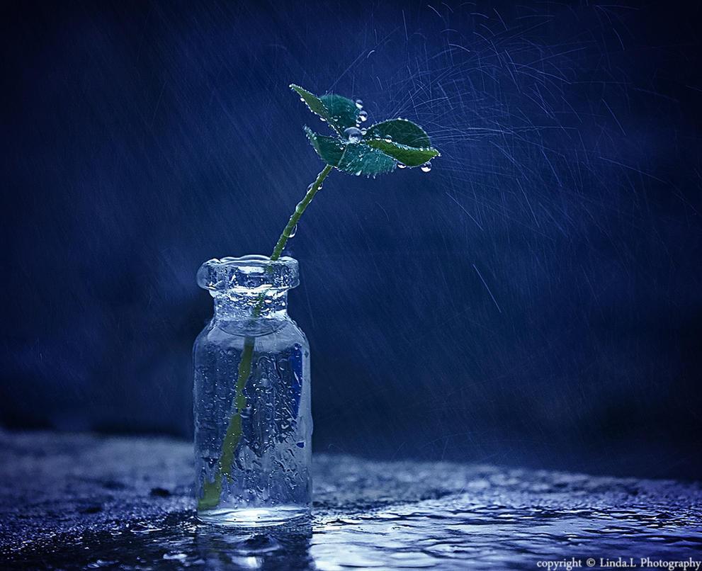 Lucky rainy day by lindahabiba