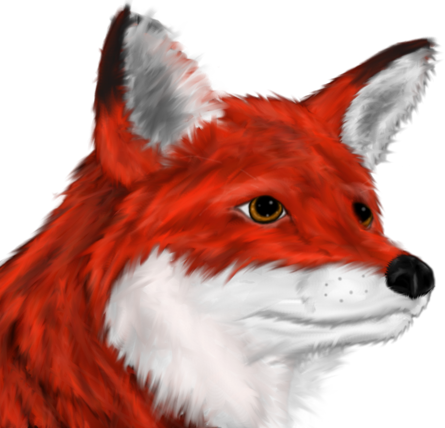 Fox Head by Ravyn-Karasu