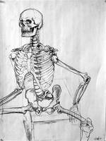 Skeletal Study 03 by nosurprises