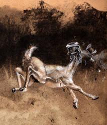 Semi Deer - 2 by nosurprises
