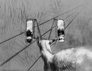 Semi-Deer - 4 by nosurprises