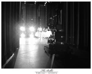 The Ballet by invidentia