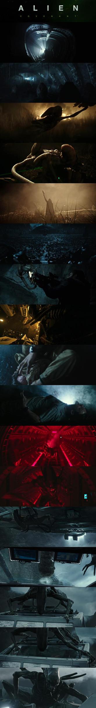 Alien Covenant trailer 2 screens by lordLKkamikaze