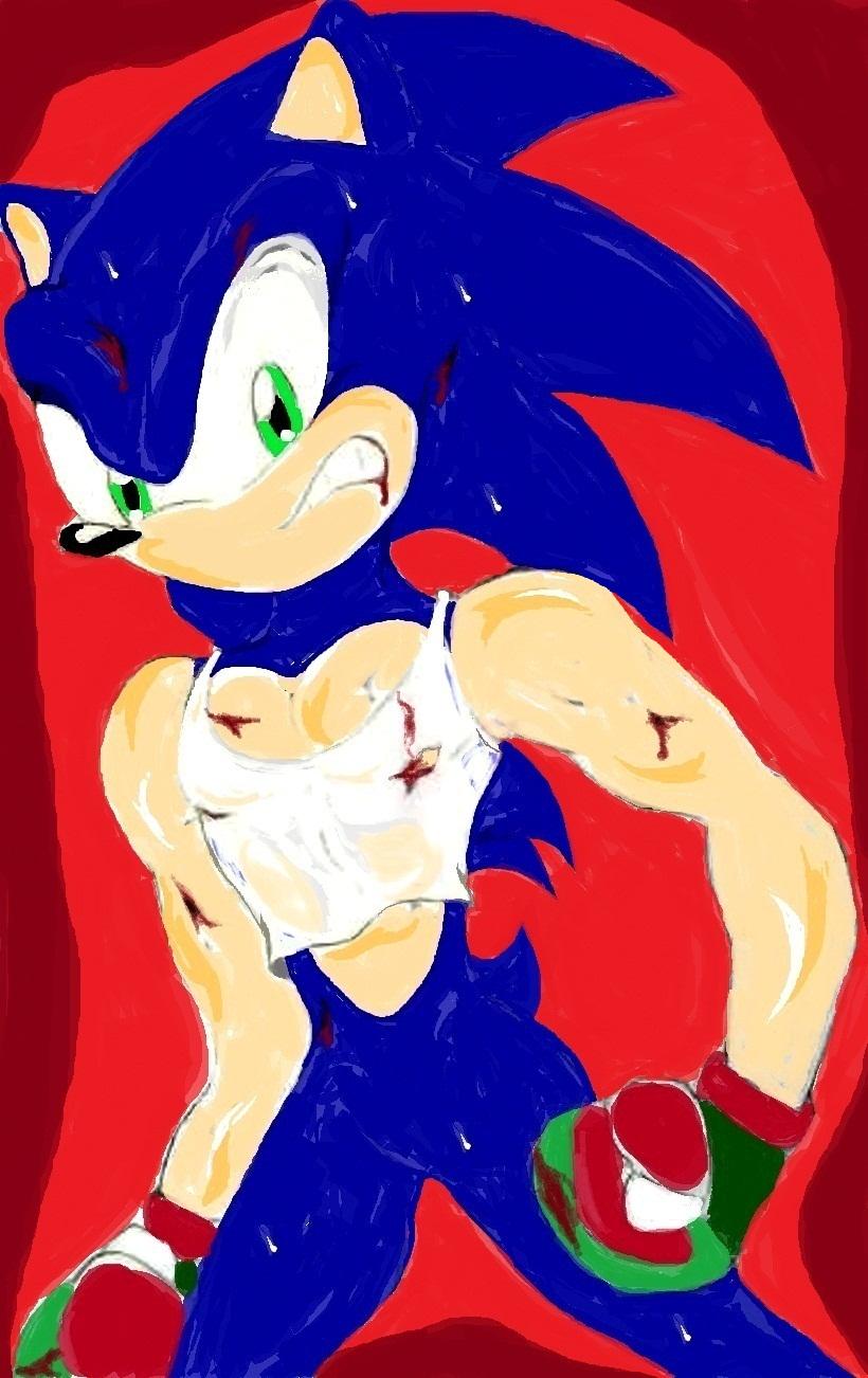 Sonic Kumite by DarkStart001