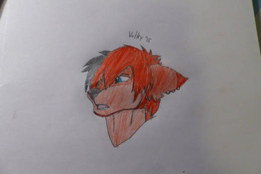 Red wolf, by Valky
