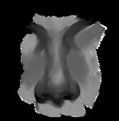 Sketchbruary 02 - Nose Study by volnaib